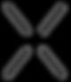 Surplexion logo.png