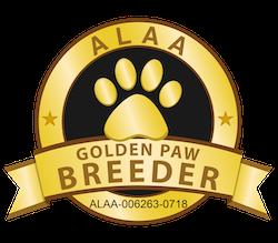 Mandevilla Golden Paw 2020 (002).png