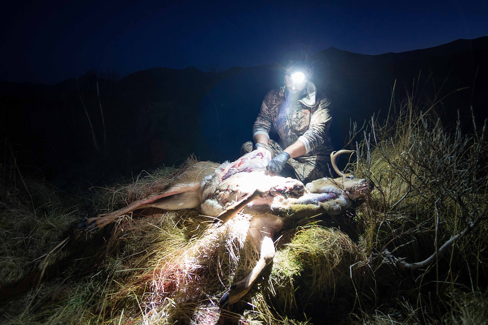 John dresses his deer out by headlamp