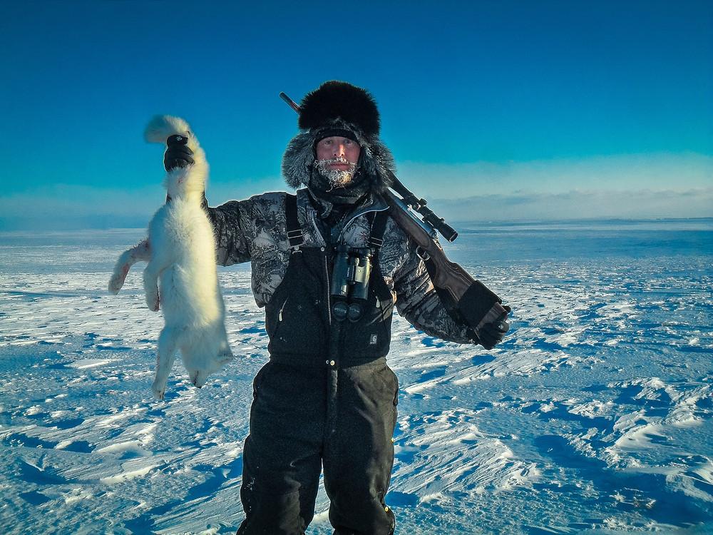 Western Alaska, Arctic Fox