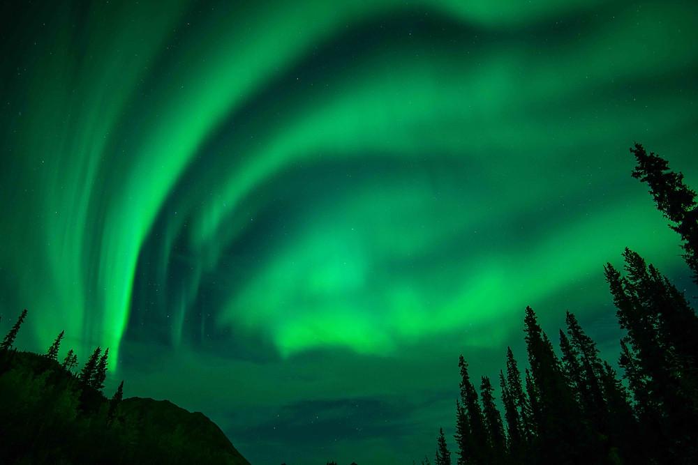 the northern lights dance overhead