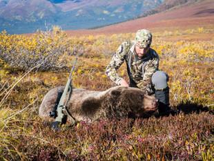 Moose Hunt 2018
