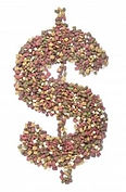 Kibble-Dollar-Sign-197x300.jpg