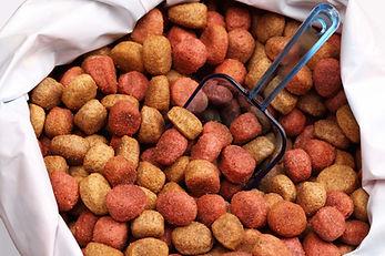dry-dog-food-allergies.jpg
