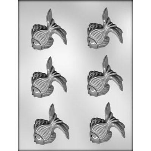 "TROPICAL FISH 2½"" CHOCOLATE MOLD"