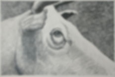 """Cattle Cutters"" (Detail), Pencil"