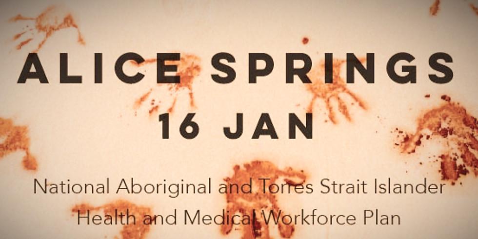 Alice Springs Regional Workshop
