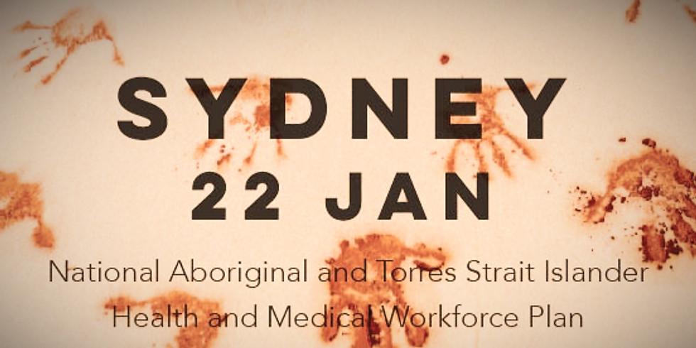 Sydney NSW Regional Workshop