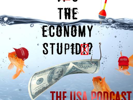 Is the Economy Stupid?