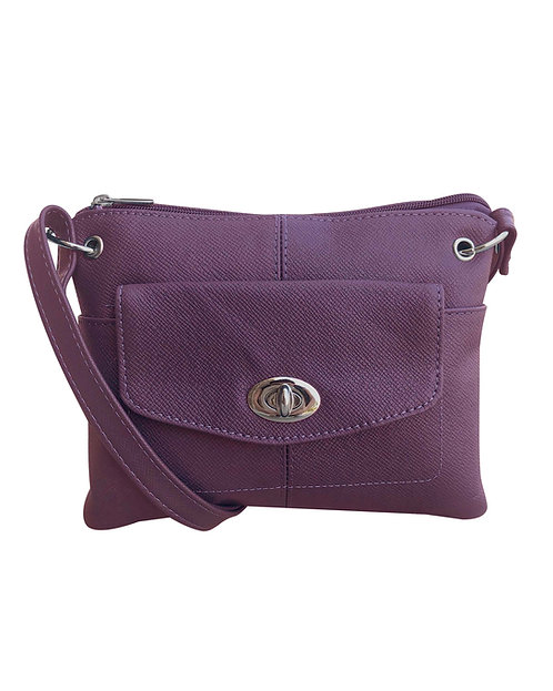 The Divided Crossbody Bag