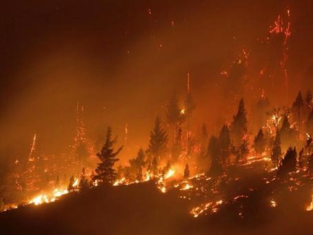 Cerca de 500 viviendas fueron afectadas por los incendios en la comarca andina de la Patagonia