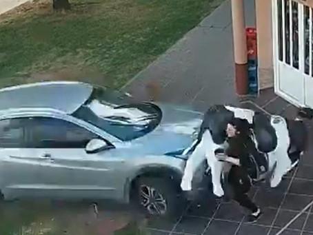 """Video: una """"vaca"""" salvó milagrosamente a una mujer de ser atropellada"""