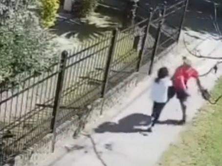 Video: Delincuente le metió un cross de derecha y noqueó a una señora para robarle la cartera