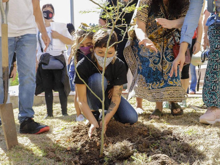 """""""Plantamos memoria, sembramos futuro"""": Mayra plantó un árbol en el ex CDDyT Pozo de Quilmes"""