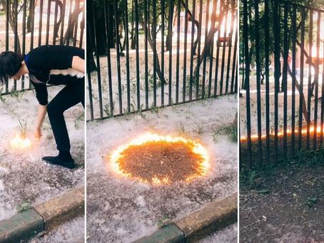 Una tendencia peligrosa en TikTok: jóvenes prenden fuego las pelusas de álamo y provocan un caos