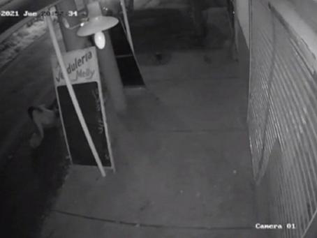 Desesperante video: así se arrojó una joven de un auto tras haber sido secuestrada