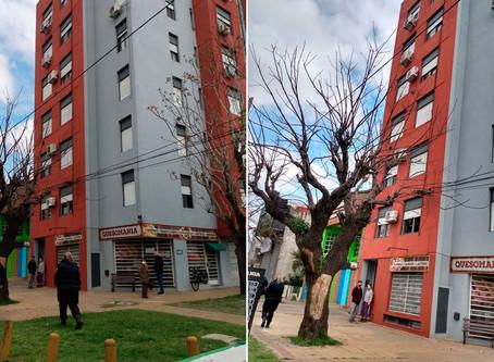 Nene de 12 cayó desde la terraza de su edificio mientras grababa un video para TikTok