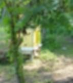 Mitten Acres Bee Hives.jpg