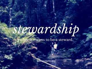 Stewardship: What It Means to Be a Steward