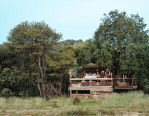 JL-Website-Naledi-Treehouse-Gallery-01.jpg