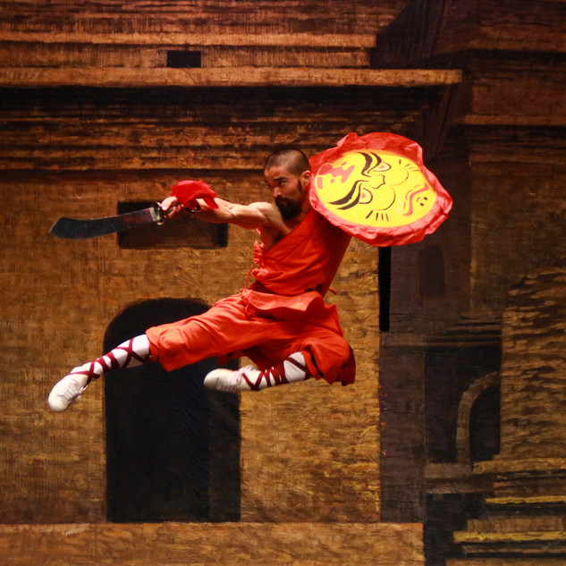 SHAOLIN WARRIORS - KUNG FU MASTERS