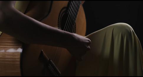 Siccas guitar