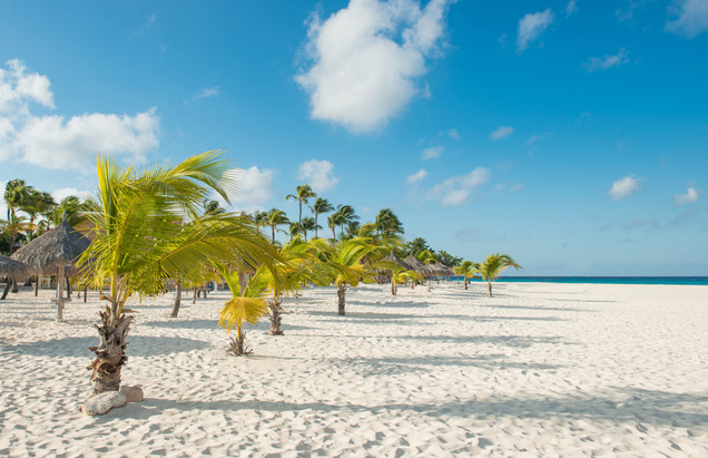 Why did Dr. Eva fall in love with Aruba?