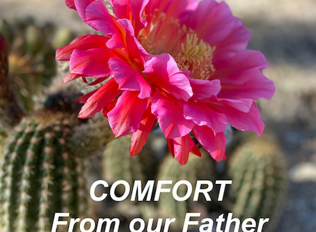Receive Comfort from the Father