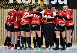 Team_2021-02-13_BSV_Sachsen_Zwickau_001.