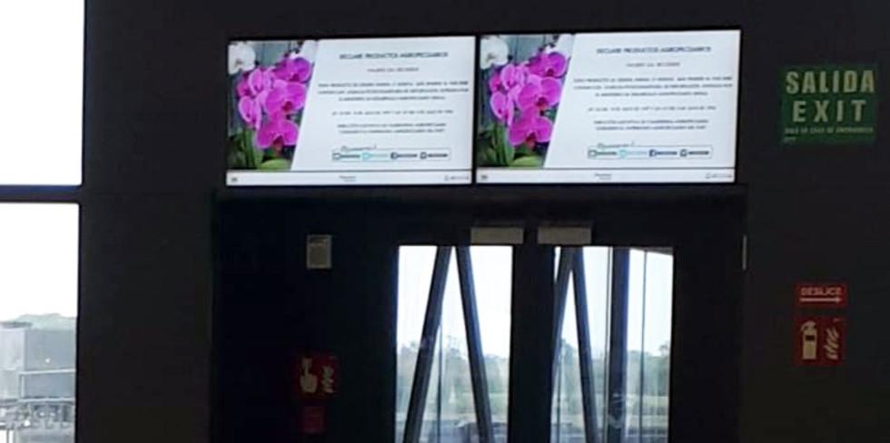 Aeropuerto II (7).jpeg