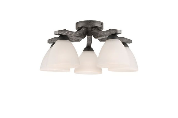 Adriano 5lt ceiling light