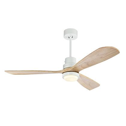 Bohemian Ceiling Fan with light.