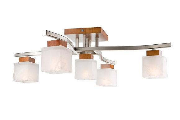Dana 5lt ceiling light
