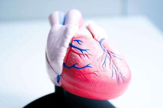 Kardiologie.jpg