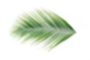 332129-P9SIOG-940.png