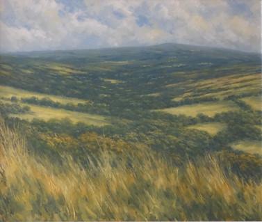 Towards Dartmoor