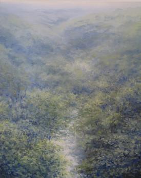 Walkham Valley, Dartmoor