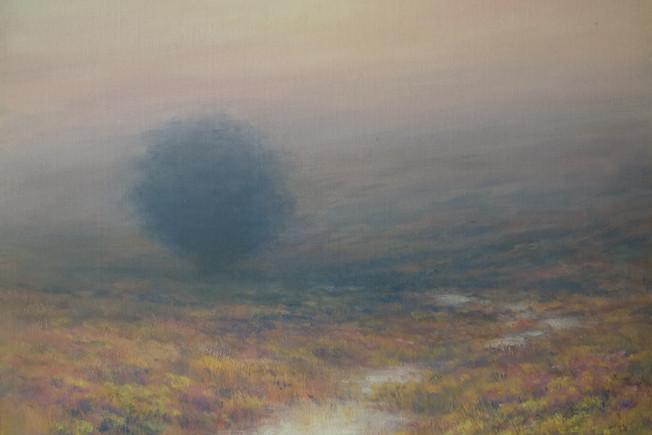 Evening Mist, Dartmoor