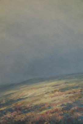 Dartmoor, Early Evening