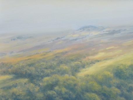 Gutter Tor, Dartmoor