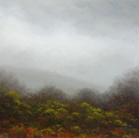 Dartmoor's Timeless Spirit