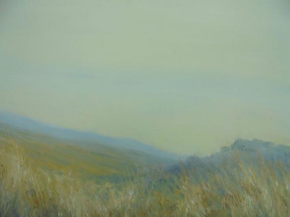 Meavy Valley, Dartmoor