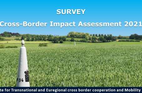 ITEM Cross-Border Impact Assessment 2021