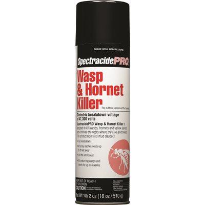 Wasp Hornet.jpg