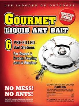 Gourmet Liquid Ant Bait