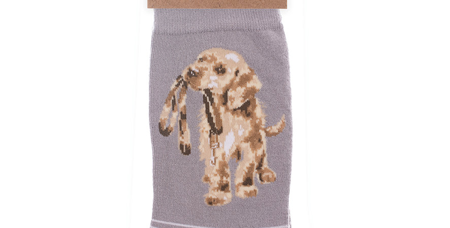 Wrendale Dog  Bamboo Socks and Gift Bag