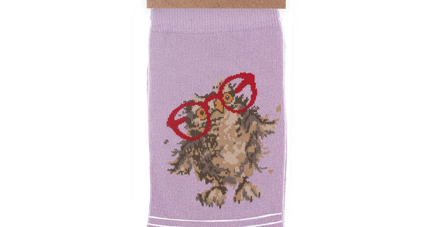 Wrendale Spectacular Owl  Bamboo Socks and Gift Bag