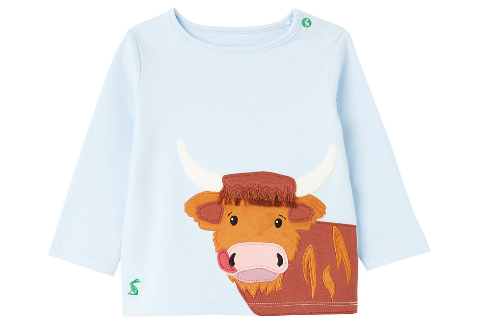 Joules Angus Top