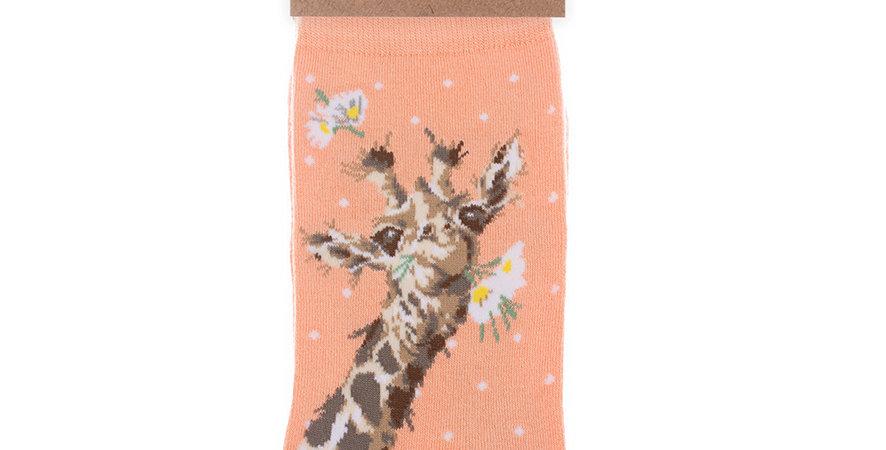 Wrendale Giraffe  Bamboo Socks and Gift Bag