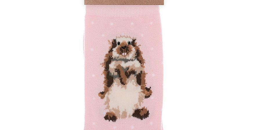 Wrendale Earistible Rabbit  Bamboo Socks and Gift Bag